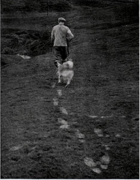 Ásólfstaðir 1947