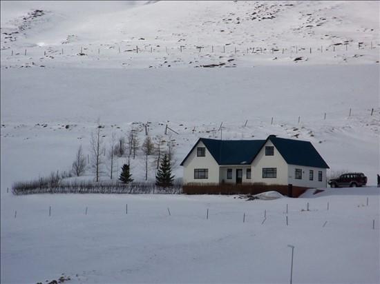 Auðnir í Öxnadal 17. mars 2008